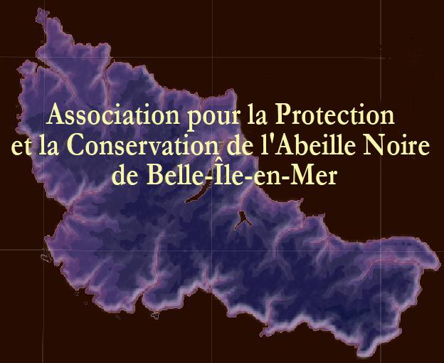 logo Conservatoire de l'abeille noire de Belle-Île-en-Mer