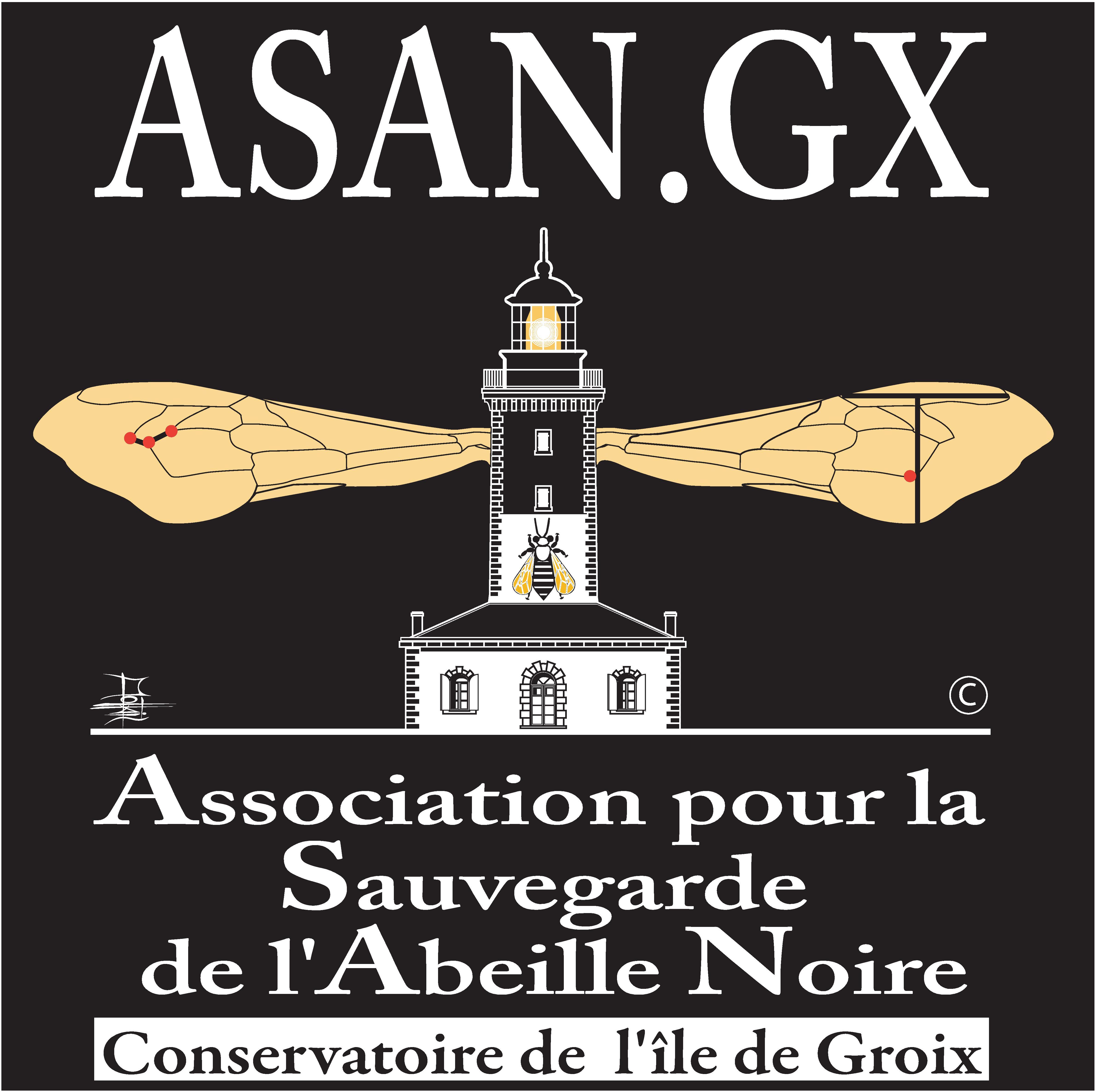 logo-conservatoire-ile-de-groix-asangx