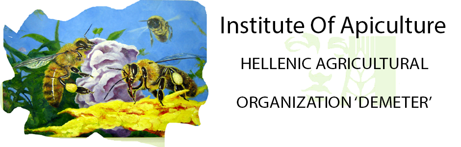 logo hellenic beeresearch