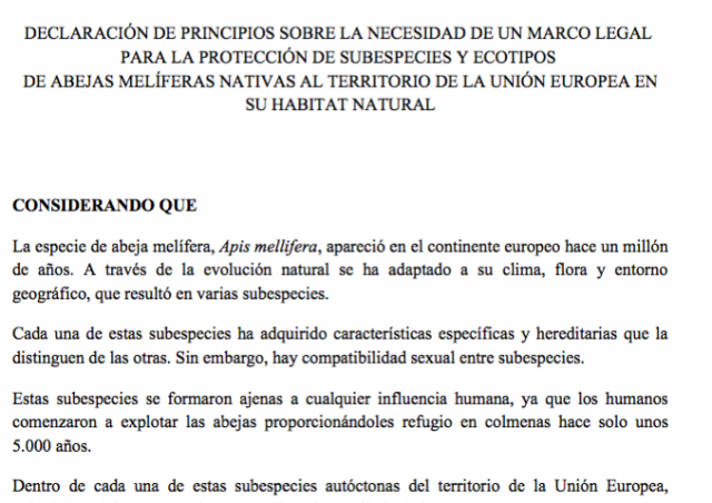 Déclaration de principe en espagnol