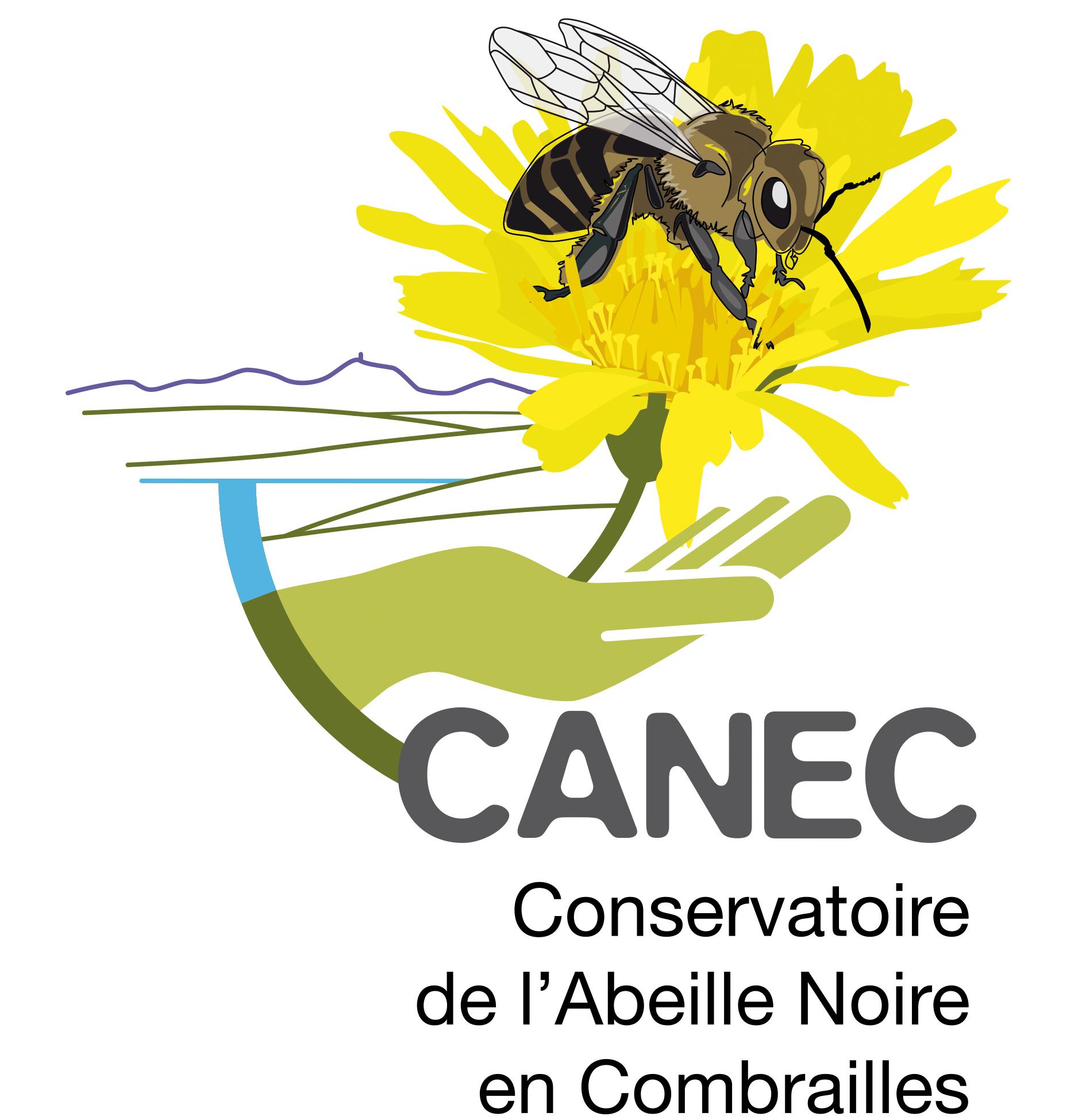Logo CANEC Quadri