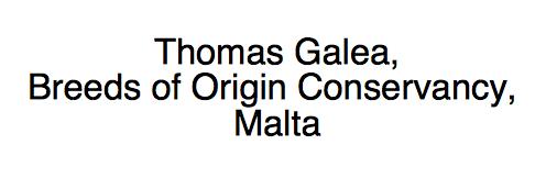 Thomas Galea
