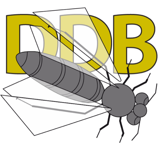 Nieuw LOGO DDB